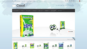 طراحی فروشگاه اینترنتی کلین شاپ