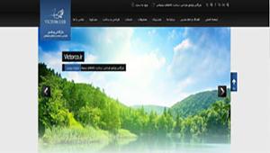 طراحی سایت بازرگاني ويکتور طراحي و ساخت کالا, کانون تبليغاتي